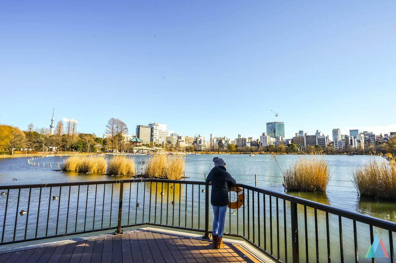 ueno-zoo-tokyo-citytrip