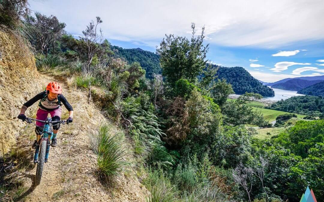 #nzmustdo Nydia Track – a singletrail bike adventure