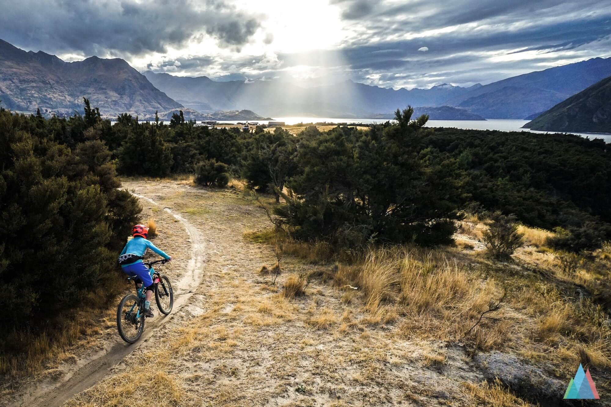 wanaka-new-zealand-mtb-trails-sticky-forest-cranking-fine-sunset