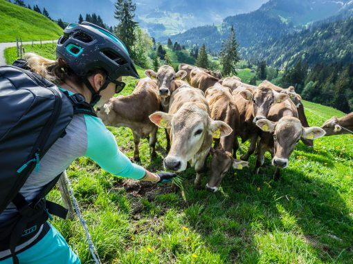 Entlebuch: Around the Schrattenfluh